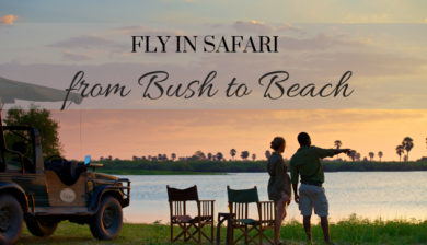 Fly In Safari Bush to Beach Tanzania